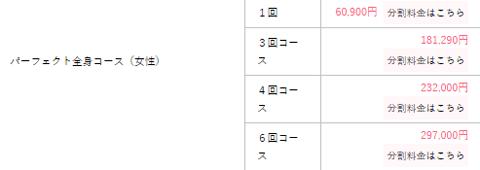 湘南美容クリニック パーフェクト全身コース