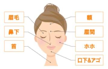 アリシアクリニック 顔脱毛 範囲 (1)