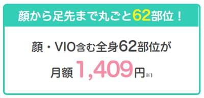 恋肌 月額1,409円