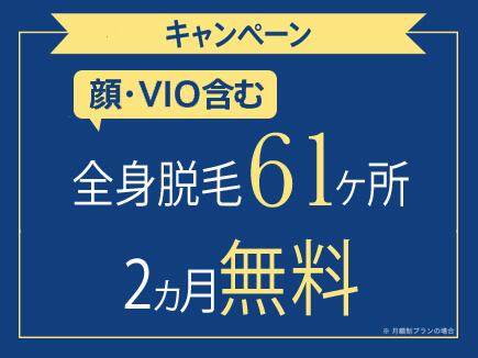 ストラッシュ-全身脱毛61箇所-期間限定初月0円-キャンペーン